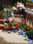 Aracil German - 'Corner of Garden'