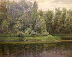 Bulgakov Valeriy - 'Overcast Day. Forest Lake'