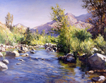 Busygin Valeriy - 'River in California'