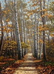 Khananin Sergey - 'The Path into the Autumn'