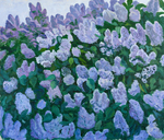 Lee Moesey - 'Lilac Is Blossoming'