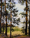 Osinin Pavel  - 'Lake near Pskov'