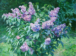 Pawlov Peter - 'Shrub of Lilac'
