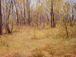 Romanow Vladimir - 'Autumn. Quiet'