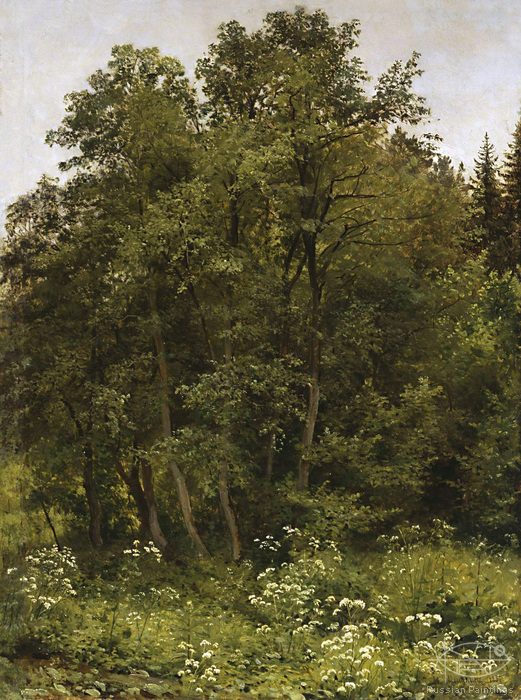 Shishkin Ivan - 'At the Edge'