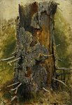 Shishkin Ivan  - 'Bark on a Dry Trunk'
