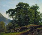 Shishkin Ivan  - 'Beech Forest in Switzerland'