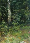 Shishkin Ivan - 'Birch and Mountain Ashes'