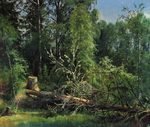 Shishkin Ivan  - 'Felled Tree'