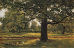 Shishkin Ivan  - 'Oaks in Old Peterhof'