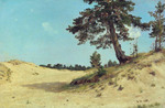 Shishkin Ivan  - 'Pine on the Sand'