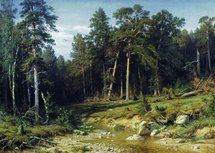 Shishkin Ivan - 'Pinery. Mastwood in the Vyatka Province'