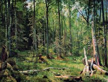 Shishkin Ivan - 'The Mixed Wood (Shmetsk near Narva)'