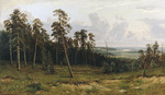 Shishkin Ivan  - 'The Rich Ravine (The Fir Wood on the Kama River)'