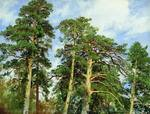 Shishkin Ivan  - 'Tops of Pines'
