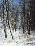 Shishkin Ivan - 'Winter in Forest (Hoarfrost)'